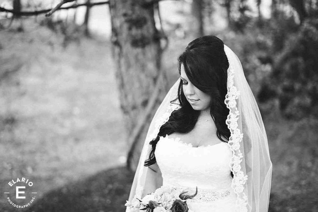 Saratoga-National-Wedding-Photos11 - Copy
