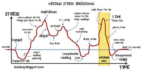 weddingstress1