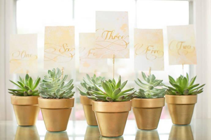 succulent-wedding-favors1