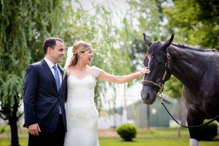 Image result for weddings at horse track